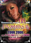 Jomosa2008c